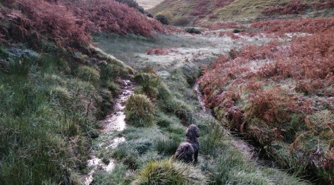 The Gododdin Heritage Trail: Nunraw to Whitecastle
