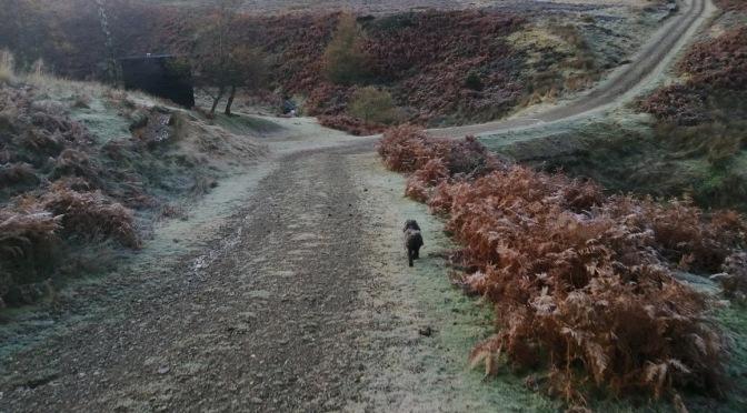 The Gododdin Heritage Trail: White Castle to Green Castle
