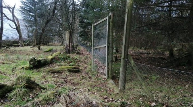 The Gododdin Heritage Trail: Green Castle to Gifford